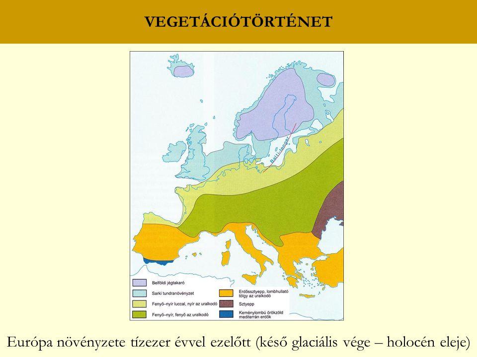 VEGETÁCIÓTÖRTÉNET Európa növényzete tízezer évvel ezelőtt (késő glaciális vége – holocén eleje)
