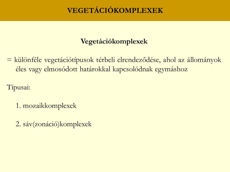 VEGETÁCIÓKOMPLEXEK Vegetációkomplexek.