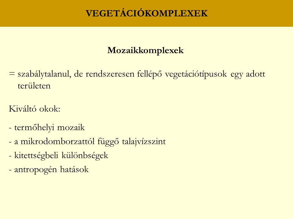 VEGETÁCIÓKOMPLEXEK Mozaikkomplexek. = szabálytalanul, de rendszeresen fellépő vegetációtípusok egy adott területen.