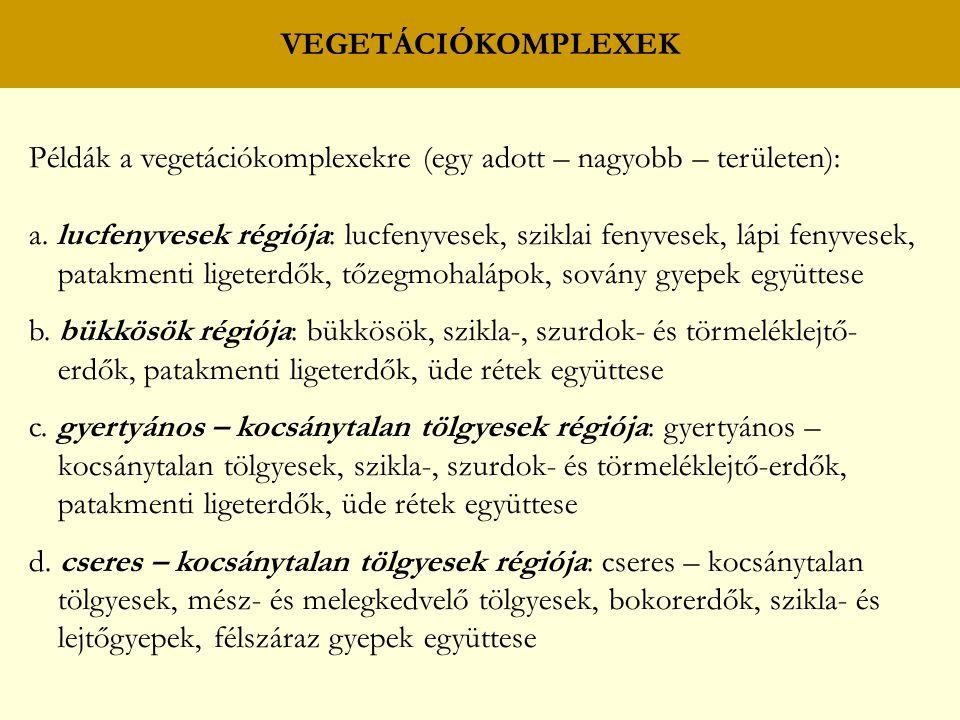 VEGETÁCIÓKOMPLEXEK Példák a vegetációkomplexekre (egy adott – nagyobb – területen):