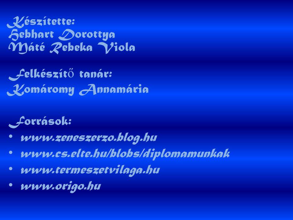 Készítette: Hebhart Dorottya Máté Rebeka Viola Felkészítő tanár:
