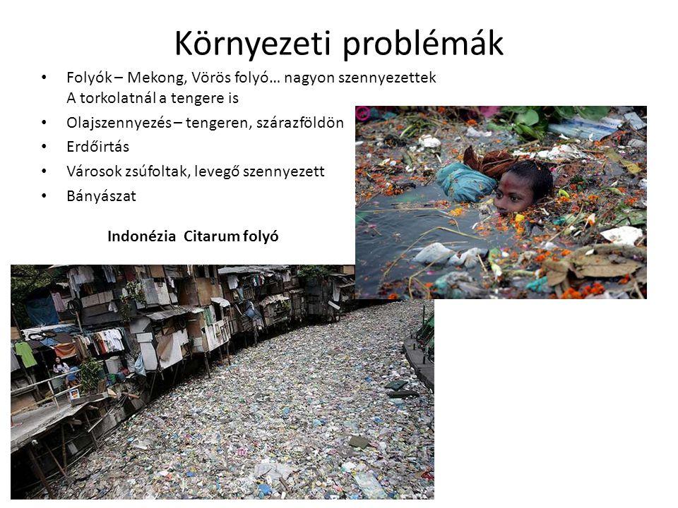 Környezeti problémák Folyók – Mekong, Vörös folyó… nagyon szennyezettek A torkolatnál a tengere is.
