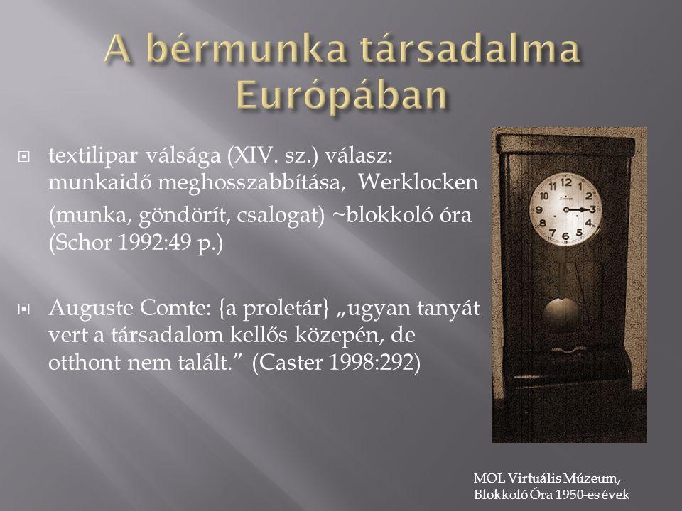 A bérmunka társadalma Európában