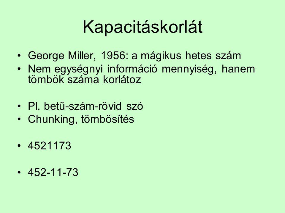 Kapacitáskorlát George Miller, 1956: a mágikus hetes szám