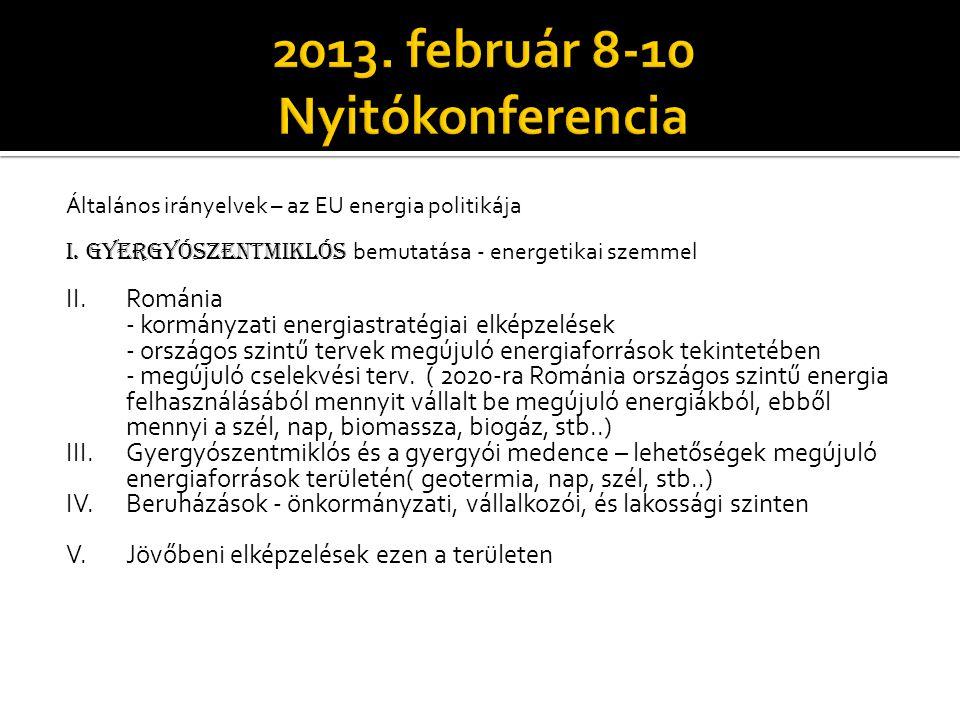 2013. február 8-10 Nyitókonferencia
