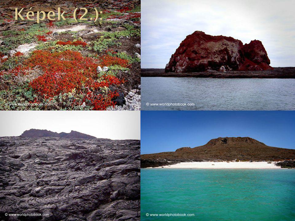 Képek (2.):