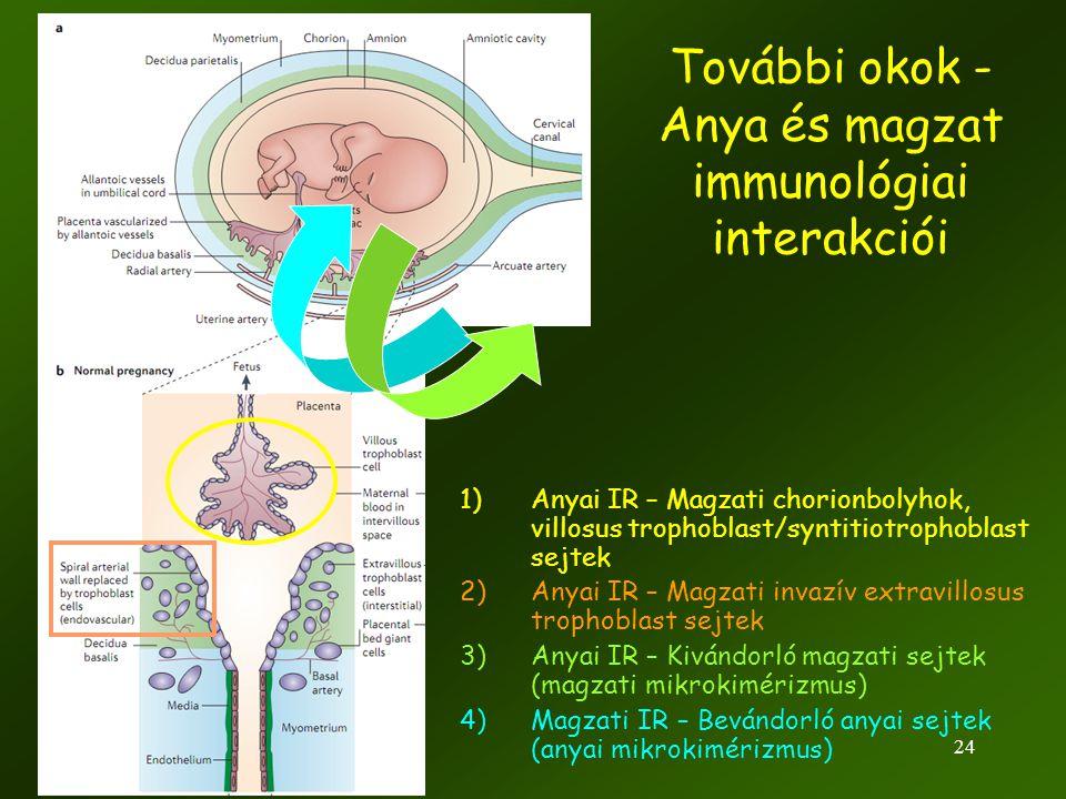 További okok - Anya és magzat immunológiai interakciói