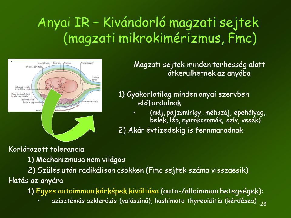 Anyai IR – Kivándorló magzati sejtek (magzati mikrokimérizmus, Fmc)