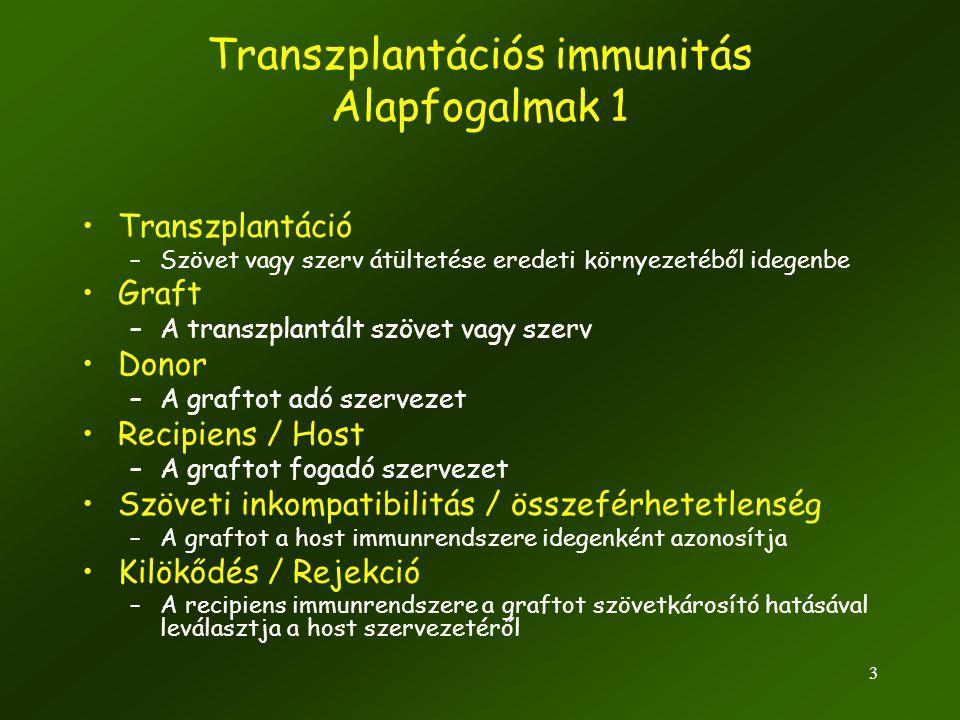 Transzplantációs immunitás Alapfogalmak 1