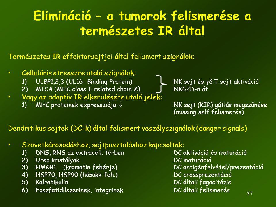 Elimináció – a tumorok felismerése a természetes IR által