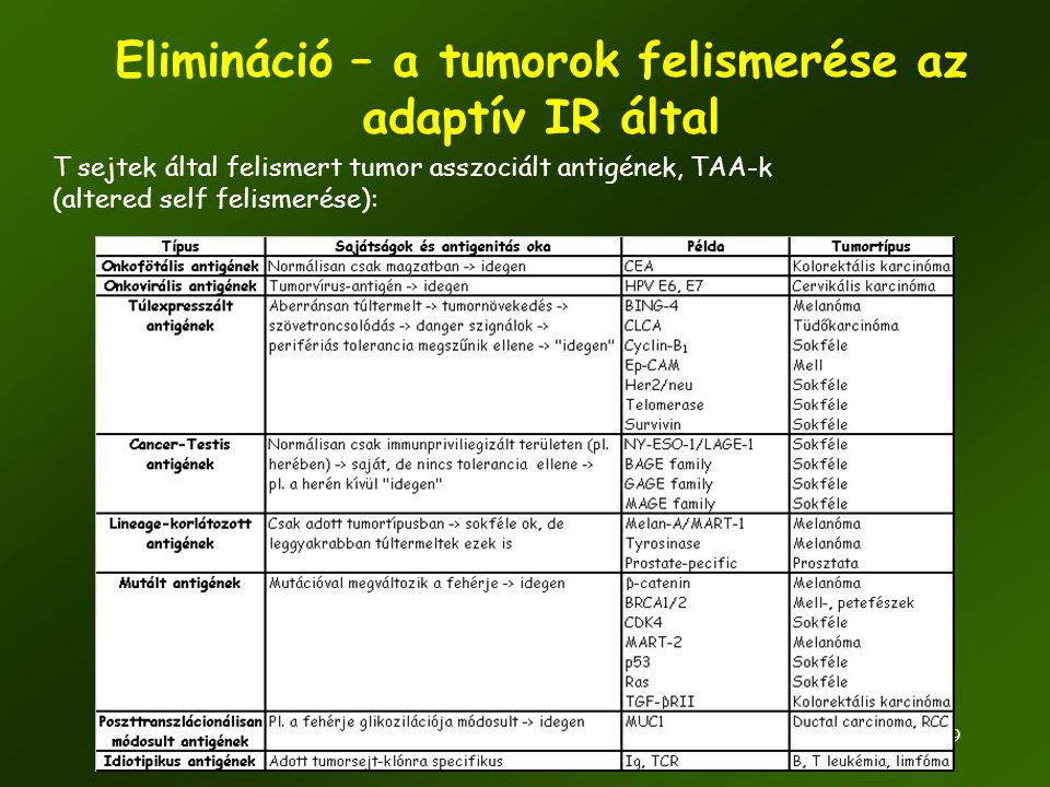 Elimináció – a tumorok felismerése az adaptív IR által