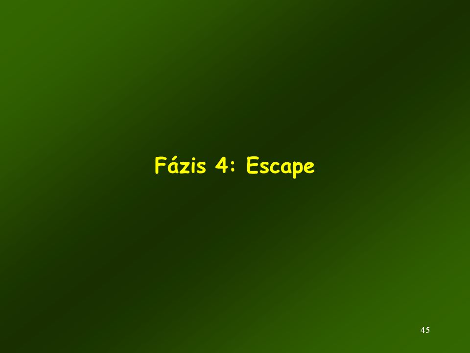 Fázis 4: Escape