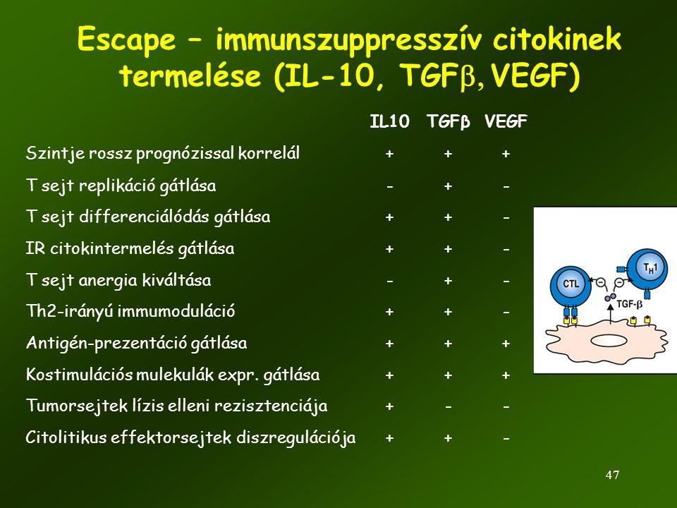 Escape – immunszuppresszív citokinek termelése (IL-10, TGFb, VEGF)