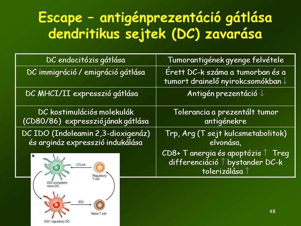 Escape – antigénprezentáció gátlása dendritikus sejtek (DC) zavarása