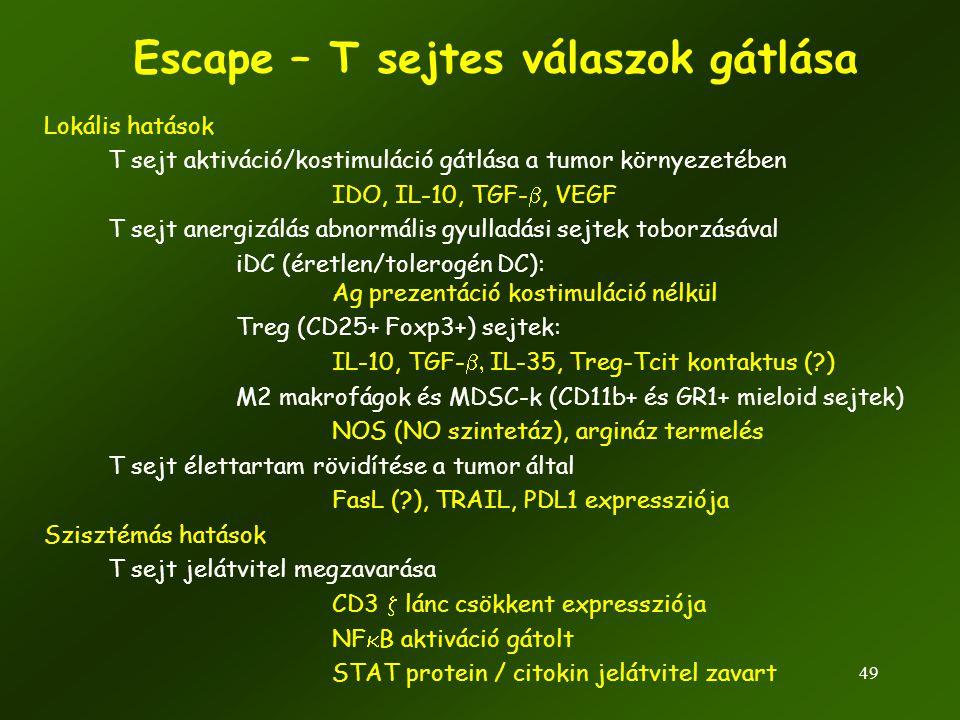 Escape – T sejtes válaszok gátlása