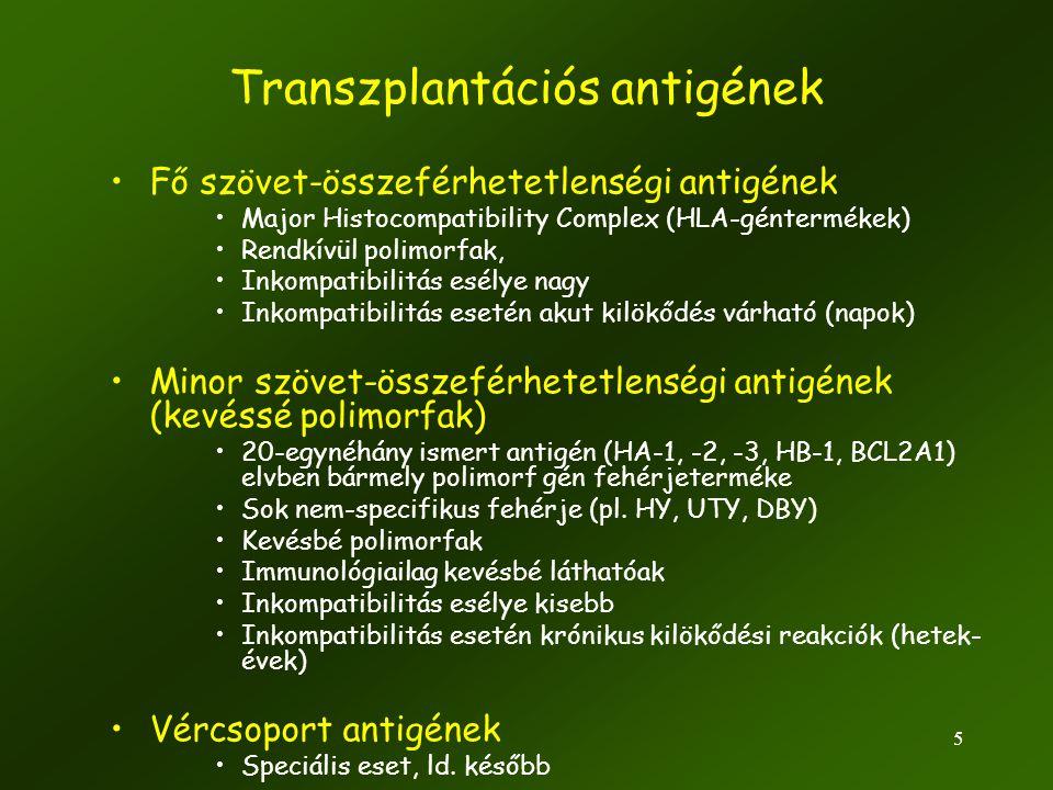 Transzplantációs antigének
