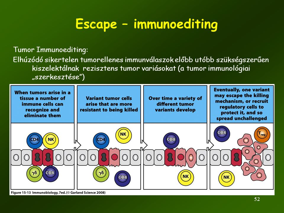 Escape – immunoediting