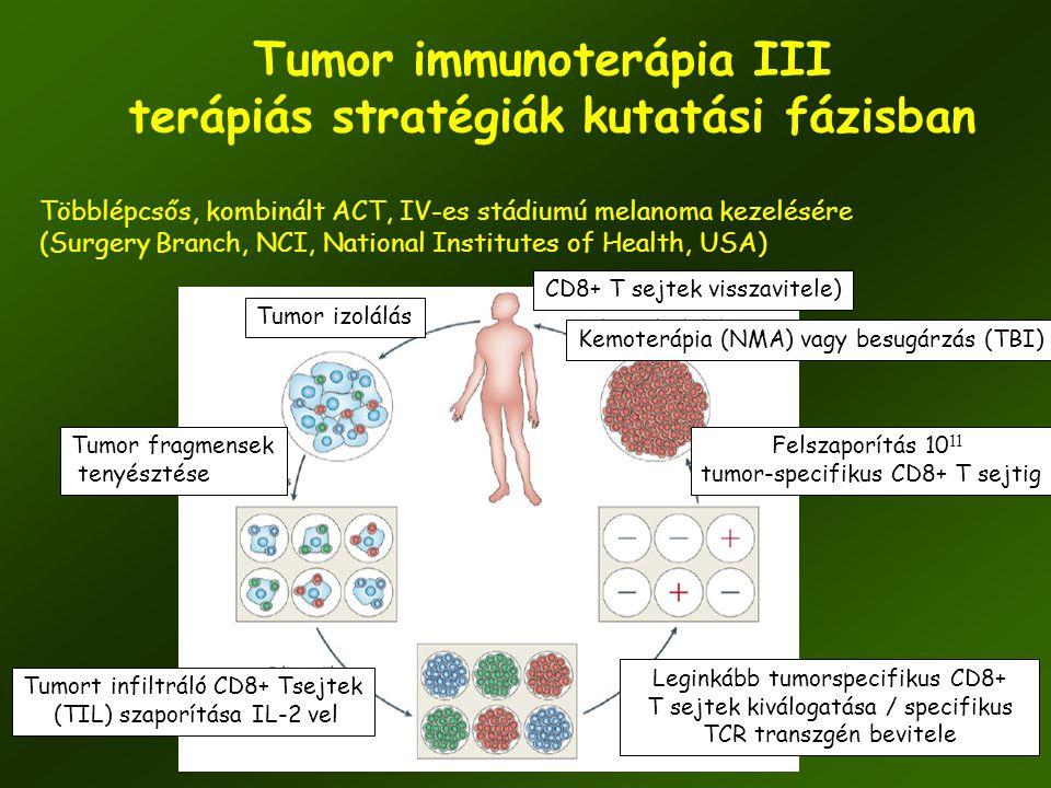 Tumor immunoterápia III terápiás stratégiák kutatási fázisban