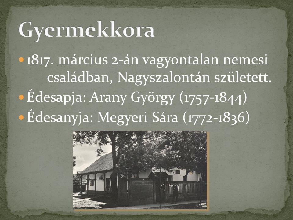 Gyermekkora 1817. március 2-án vagyontalan nemesi családban, Nagyszalontán született. Édesapja: Arany György (1757-1844)