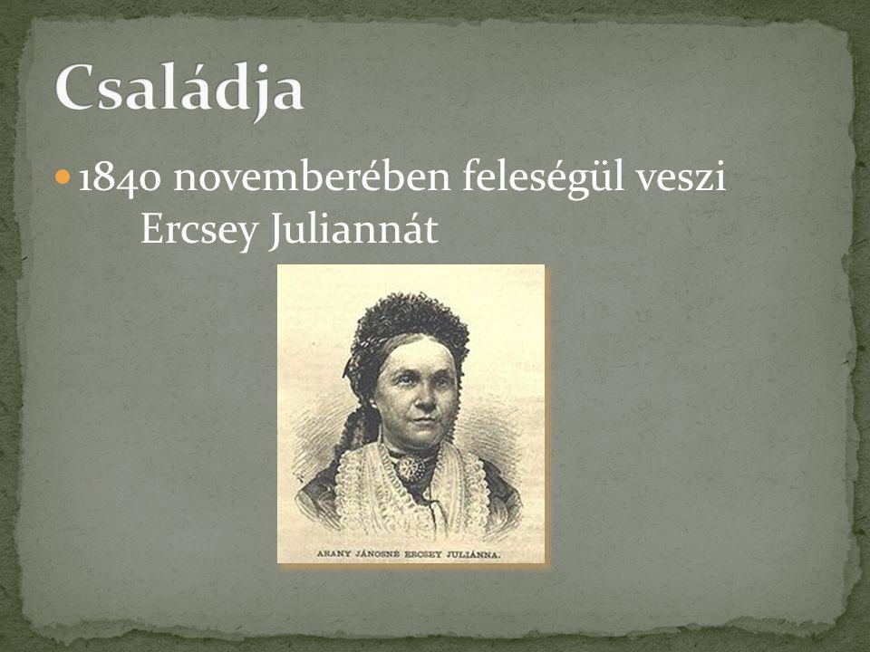 Családja 1840 novemberében feleségül veszi Ercsey Juliannát