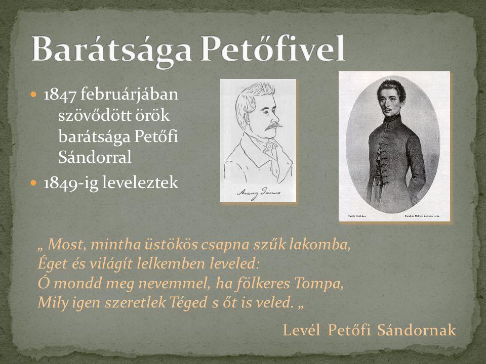 Barátsága Petőfivel 1847 februárjában szövődött örök barátsága Petőfi Sándorral. 1849-ig leveleztek.