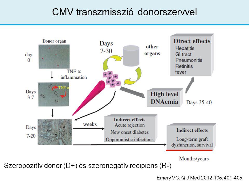 CMV transzmisszió donorszervvel