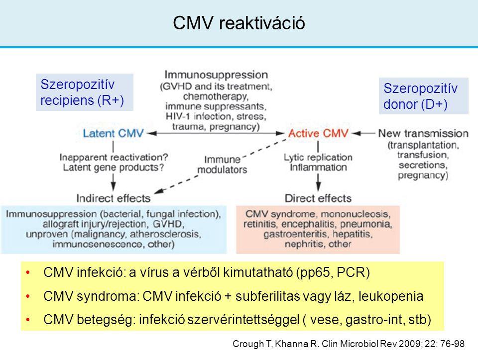 CMV reaktiváció Szeropozitív recipiens (R+) Szeropozitív donor (D+)