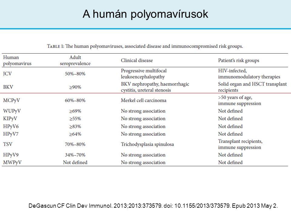 A humán polyomavírusok