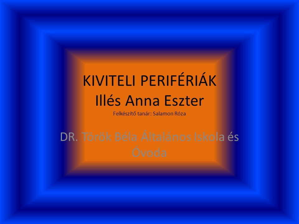 KIVITELI PERIFÉRIÁK Illés Anna Eszter Felkészítő tanár: Salamon Róza