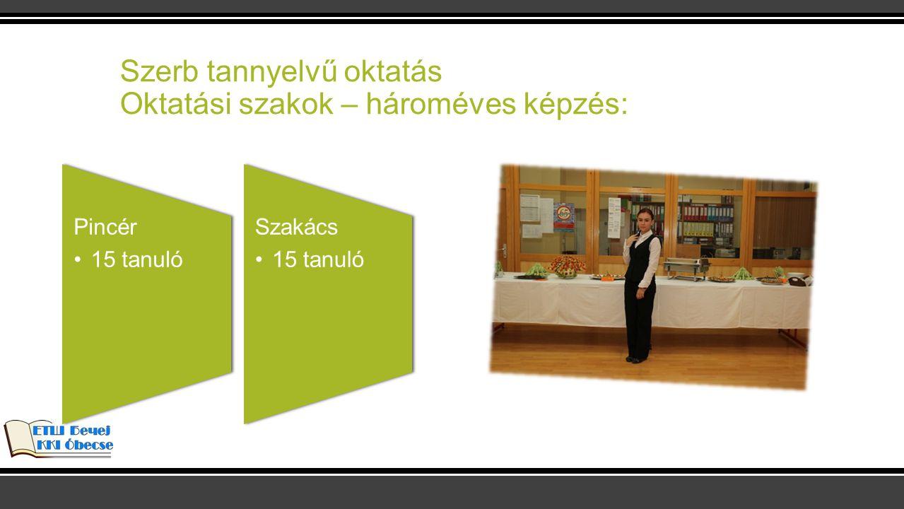 Szerb tannyelvű oktatás Oktatási szakok – hároméves képzés: