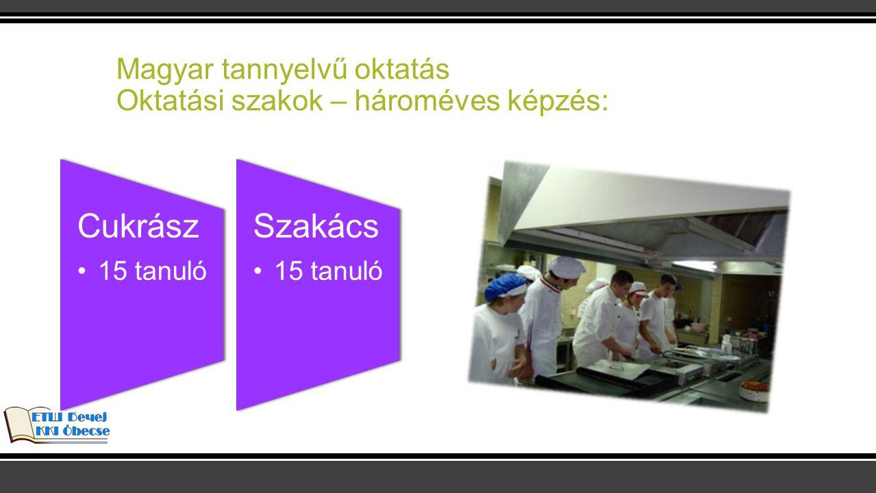 Magyar tannyelvű oktatás Oktatási szakok – hároméves képzés: