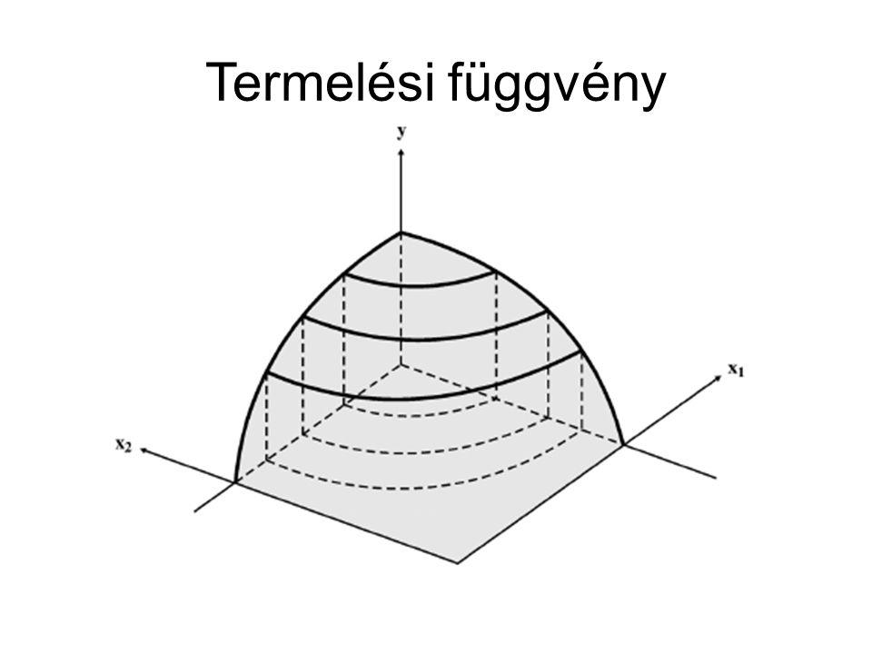 Termelési függvény Termelési függvény, mint technológiai korlát.