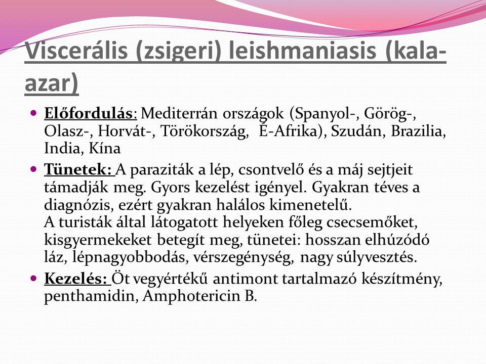 Viscerális (zsigeri) leishmaniasis (kala-azar)