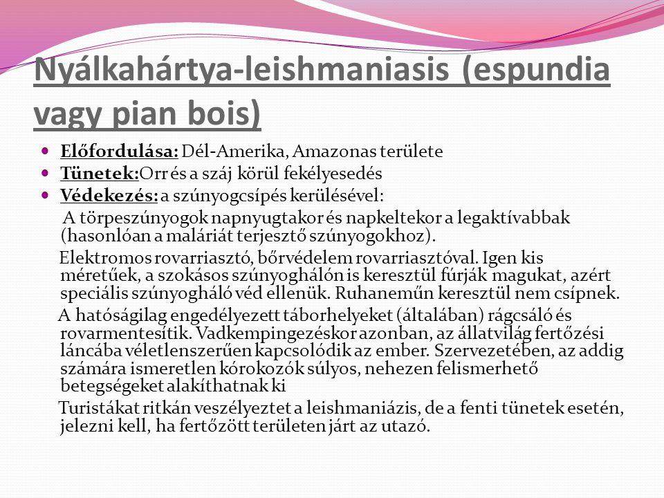 Nyálkahártya-leishmaniasis (espundia vagy pian bois)