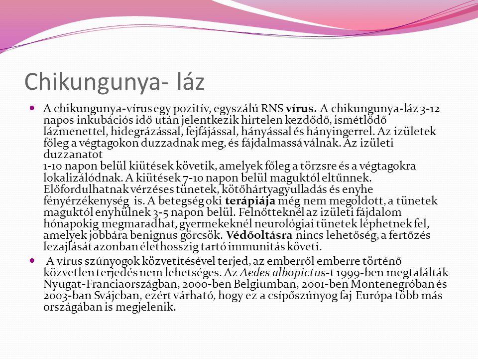 Chikungunya- láz
