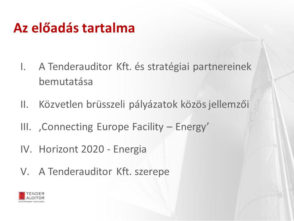Az előadás tartalma A Tenderauditor Kft. és stratégiai partnereinek bemutatása. Közvetlen brüsszeli pályázatok közös jellemzői.