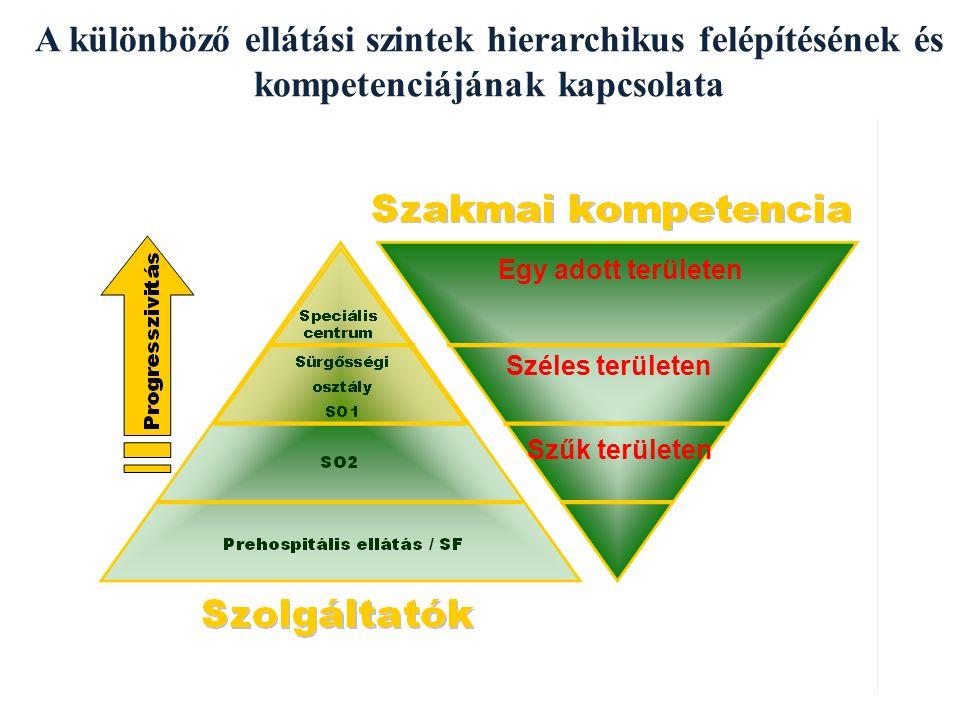 A különböző ellátási szintek hierarchikus felépítésének és kompetenciájának kapcsolata