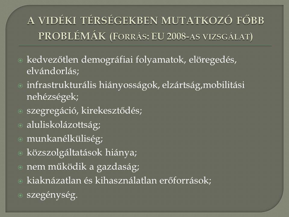 a vidéki térségekben mutatkozó főbb problémák (Forrás: EU 2008-as vizsgálat)