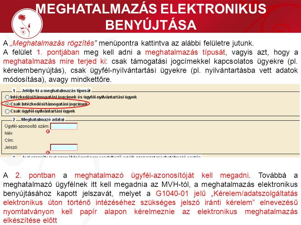 MEGHATALMAZÁS ELEKTRONIKUS BENYÚJTÁSA