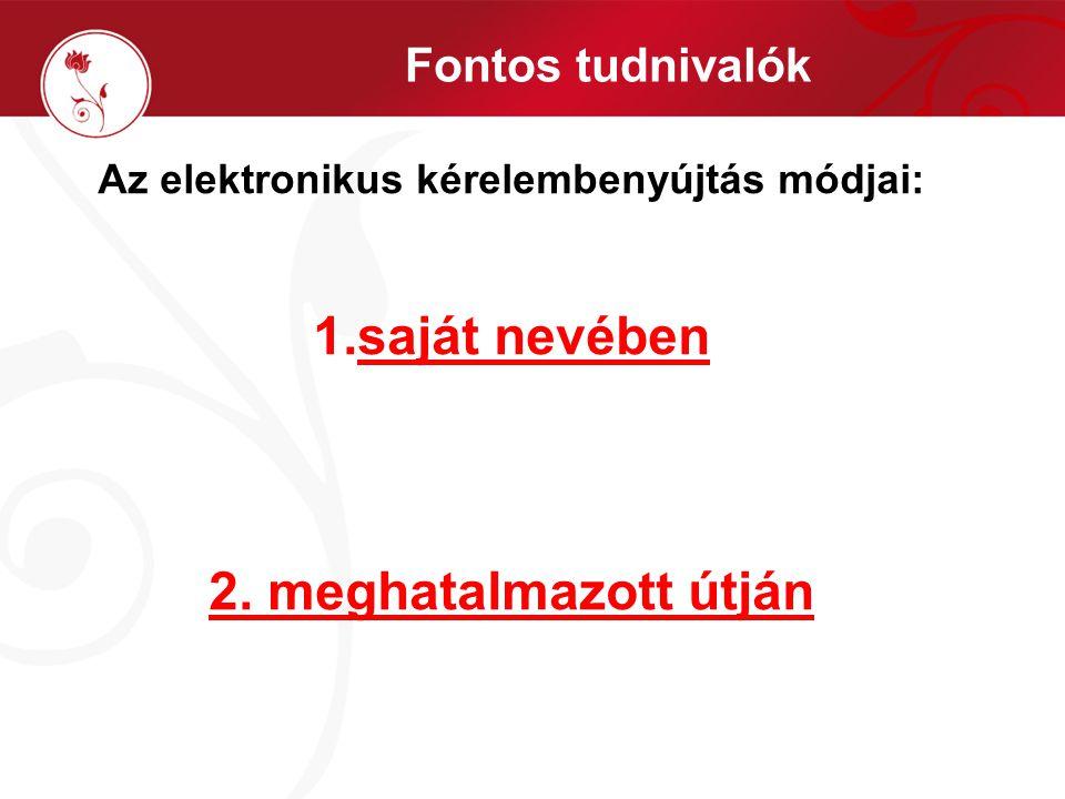 Az elektronikus kérelembenyújtás módjai: