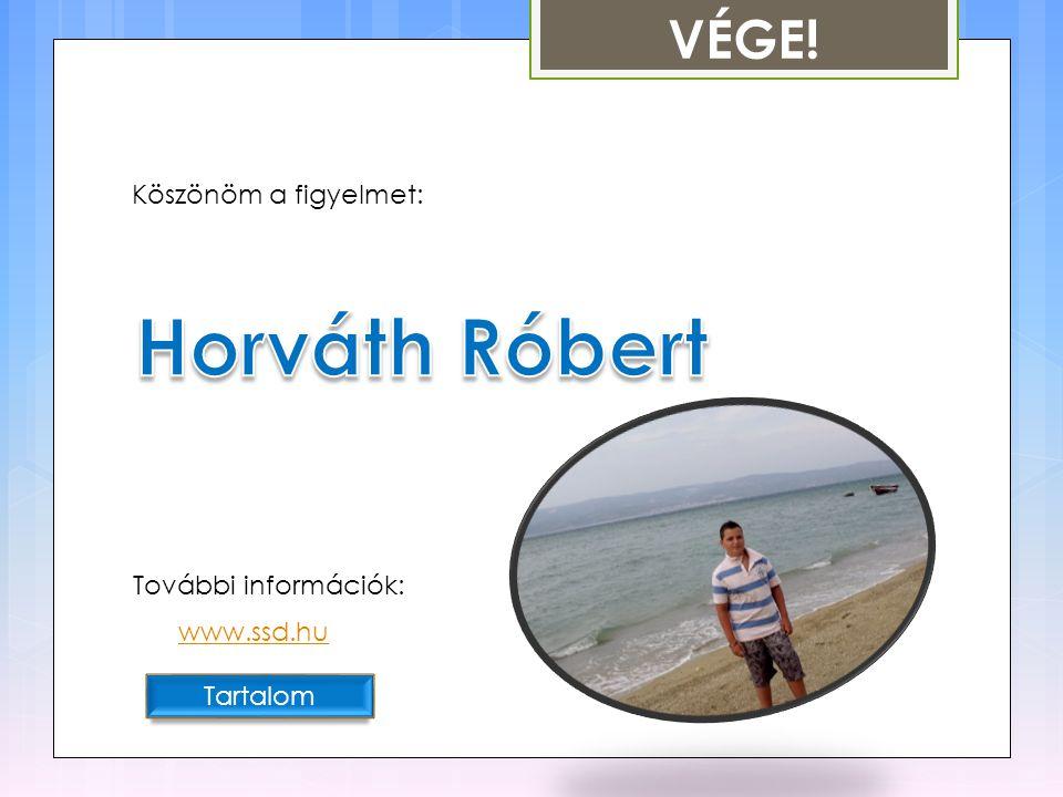 Horváth Róbert VÉGE! Köszönöm a figyelmet: További információk: