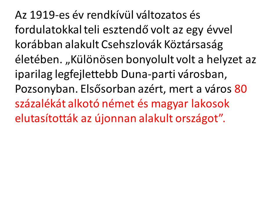 Az 1919-es év rendkívül változatos és fordulatokkal teli esztendő volt az egy évvel korábban alakult Csehszlovák Köztársaság életében.