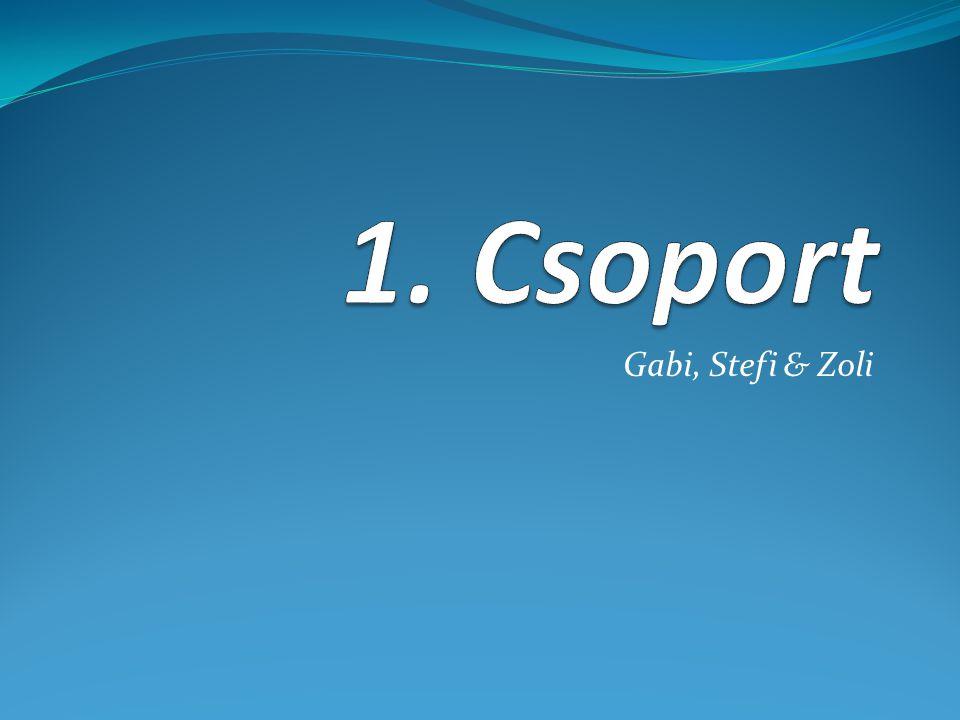 1. Csoport Gabi, Stefi & Zoli