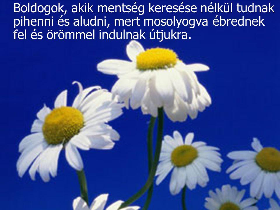 Boldogok, akik mentség keresése nélkül tudnak pihenni és aludni, mert mosolyogva ébrednek fel és örömmel indulnak útjukra.