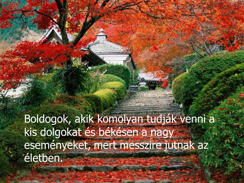 Boldogok, akik komolyan tudják venni a kis dolgokat és békésen a nagy eseményeket, mert messzire jutnak az életben.