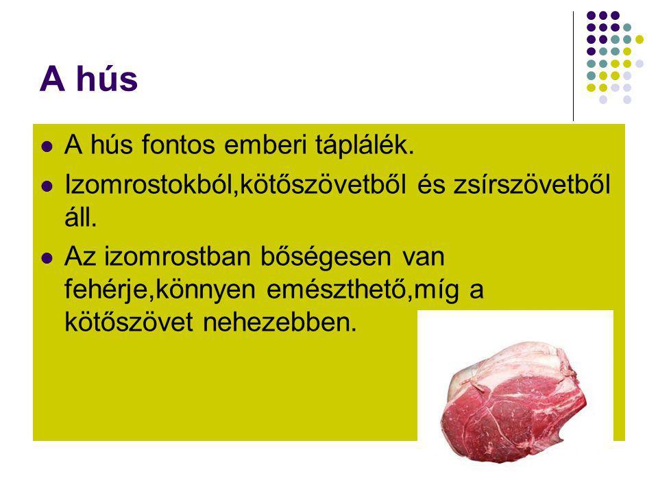 A hús A hús fontos emberi táplálék.