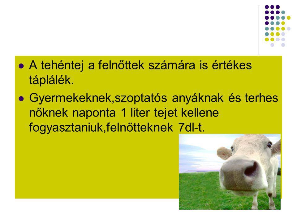 A tehéntej a felnőttek számára is értékes táplálék.