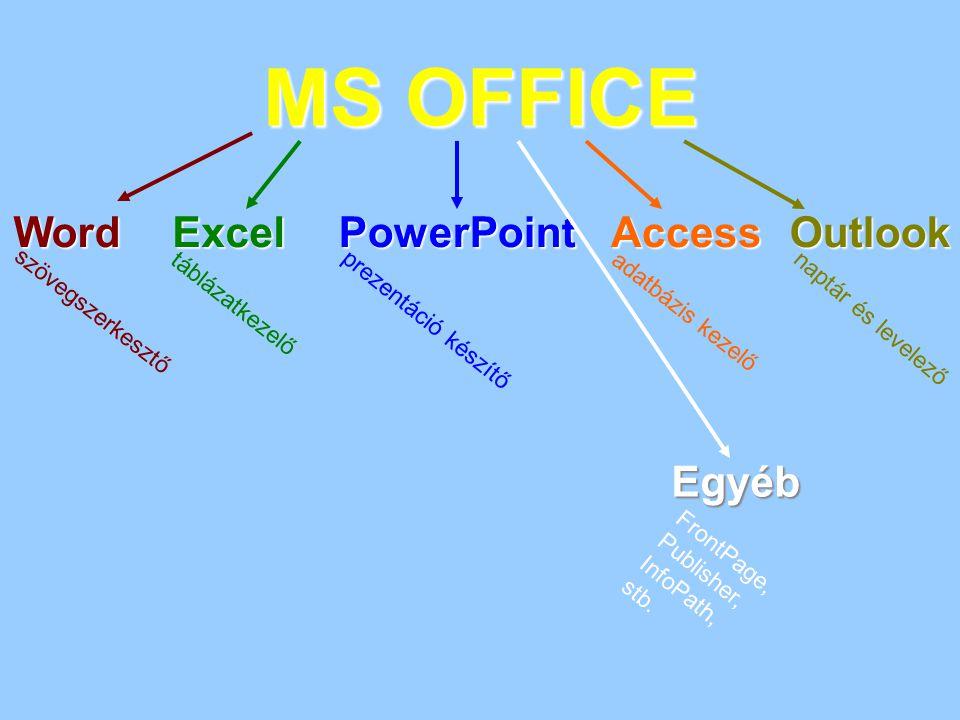 MS OFFICE Word Excel PowerPoint Access Outlook Egyéb táblázatkezelő