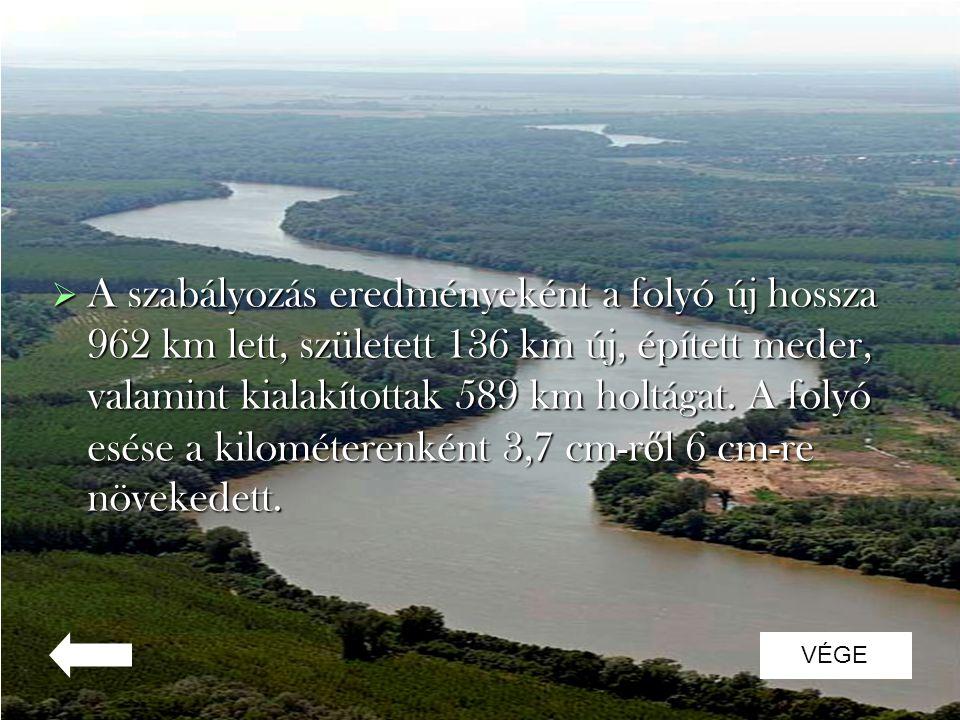 A szabályozás eredményeként a folyó új hossza 962 km lett, született 136 km új, épített meder, valamint kialakítottak 589 km holtágat. A folyó esése a kilométerenként 3,7 cm-ről 6 cm-re növekedett.