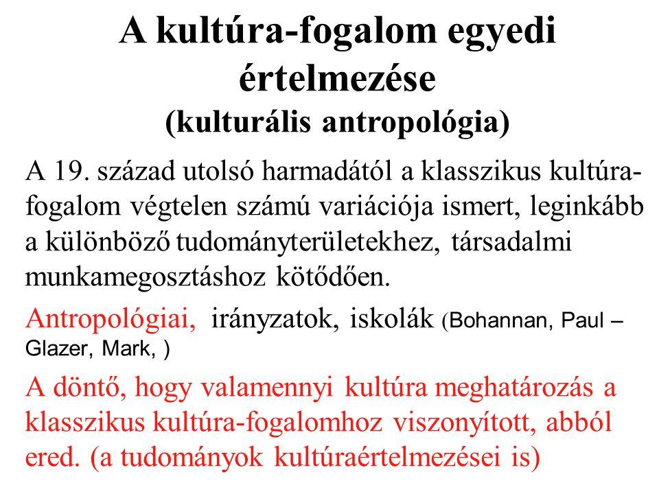 A kultúra-fogalom egyedi értelmezése (kulturális antropológia)